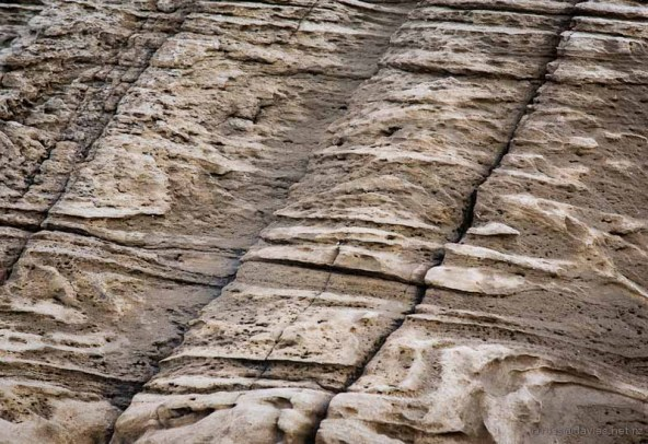 Shoreline rock patterns on the Mangawhai Cliff Top Walkway