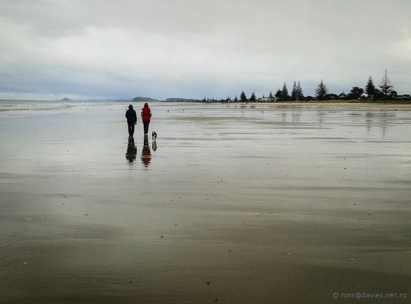 Looking south on Waihi Beach