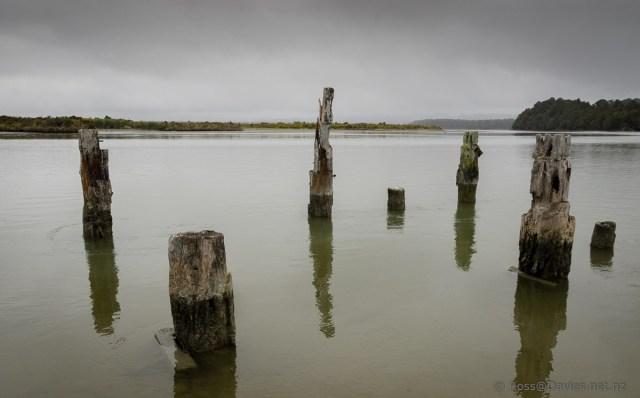 Old wharf piles at Okarito Lagoon