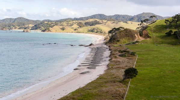 Kupe Bay Mimiwhangata Coastal Park