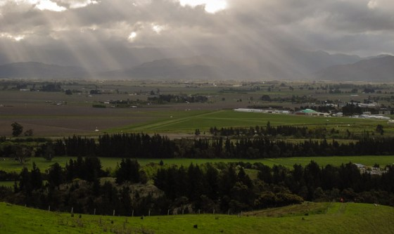 Wairau Valley