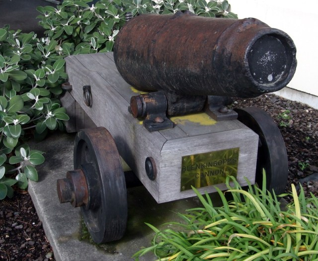 Blenkinsopp's cannon - Blenheim