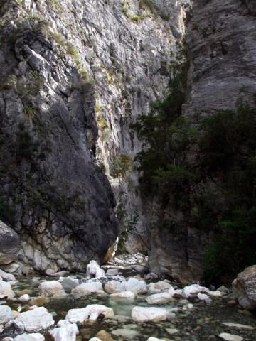 Looking down Isolation Creek