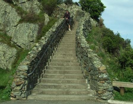 Wyn and Monkey Bay track steps