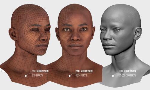 Retopologize Human Face tech data