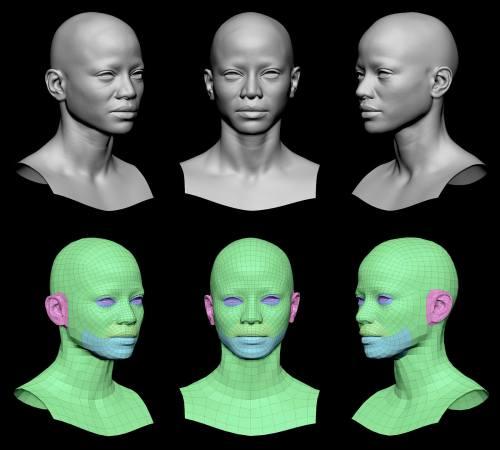 Retopologized 3d head scan