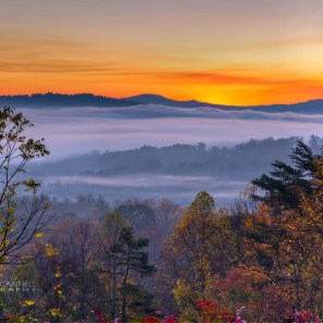 Colorful Morning