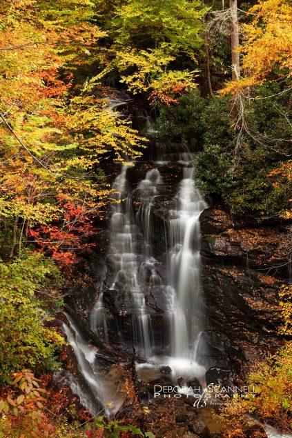 Soco Falls Dresssed for Autumn 2013