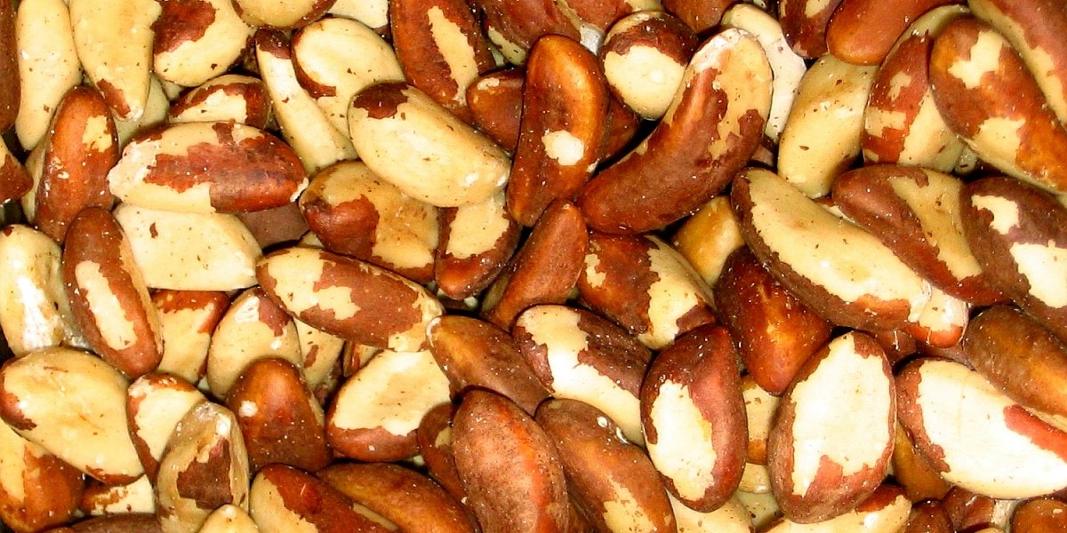 Is extra Selenium nuts?