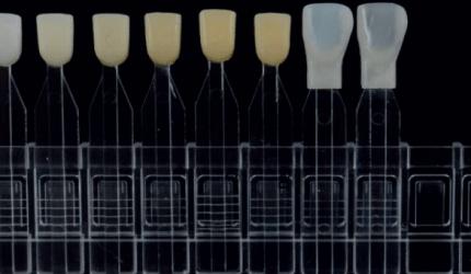 Revestimentos de Resinas Compostas Pré-Fabricadas: A Revisão Clínica