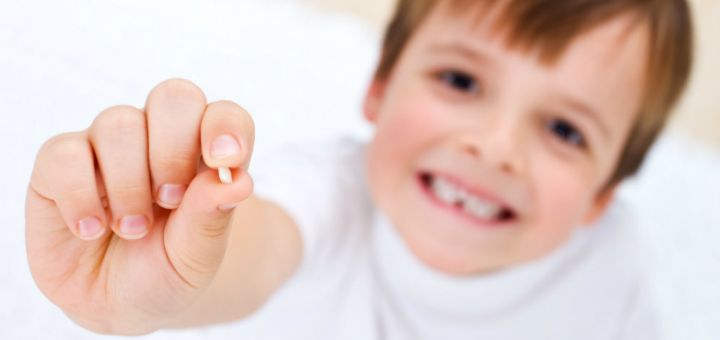 Células-tronco em dente de leite
