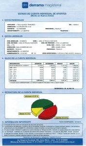 Estado de Cuenta Individual