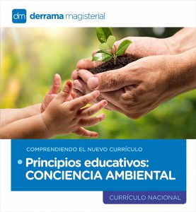 Comprendiendo el Currículo: Principios Educativos-Conciencia Ambiental