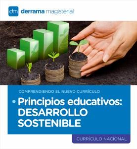 Comprendiendo el Currículo: Principios Educativos-Desarrollo sostenible