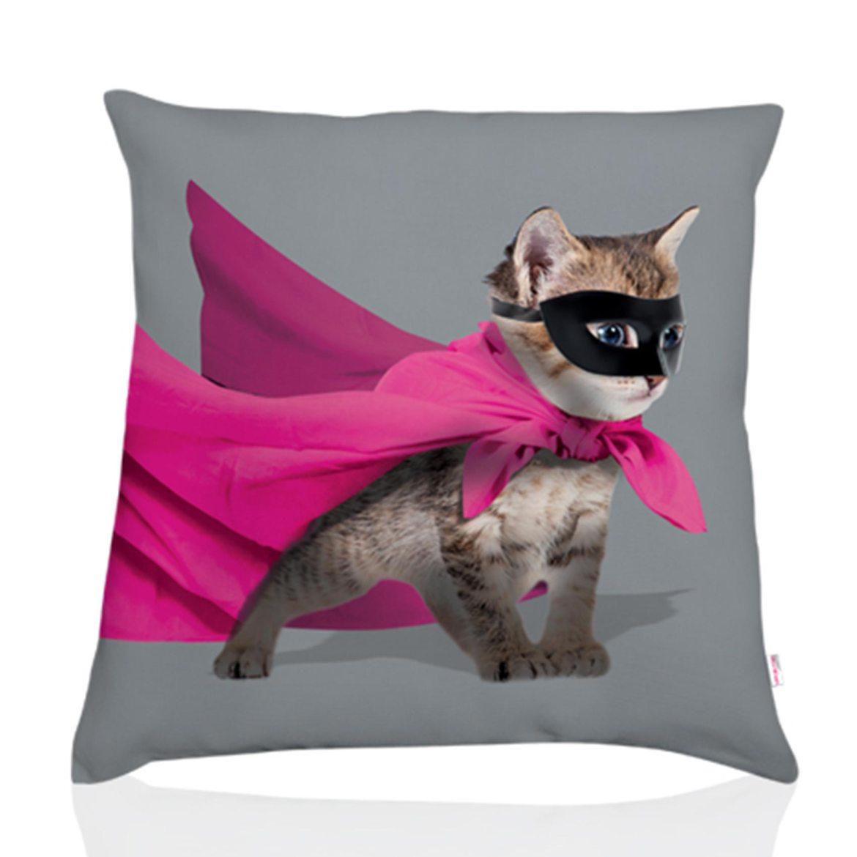 Coussin-chien-téo-jasmin-chat-hero-gris