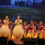 American-Chinese-Culture-Association