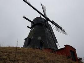 Loggen im Wind