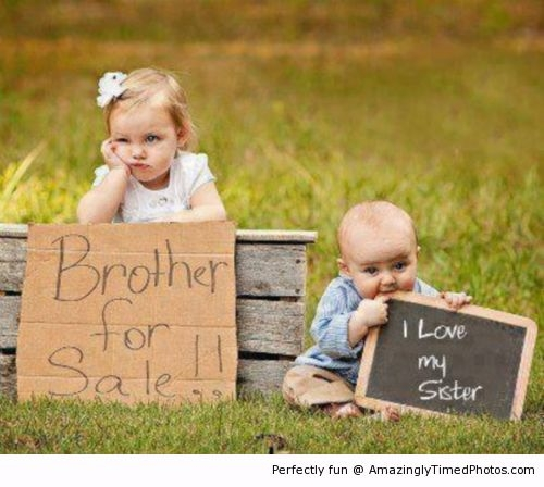 Brother-for-sale-resizecrop--