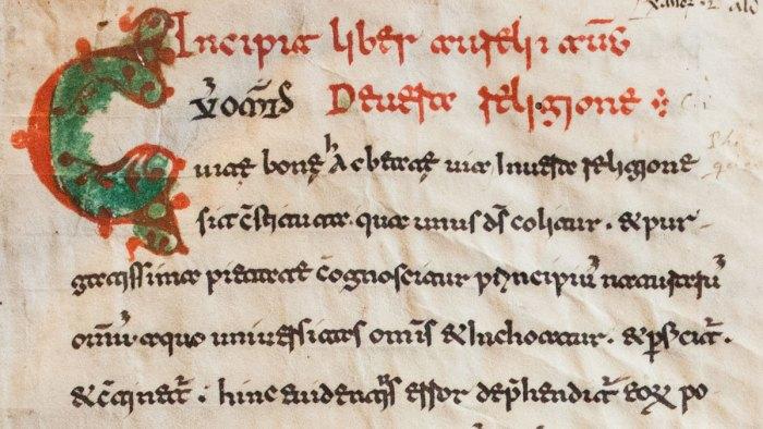 Beneventan Script Sample