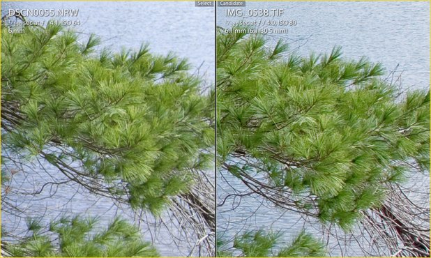 Perbandingan hasil jepretan kamera dslr nikon vs canon
