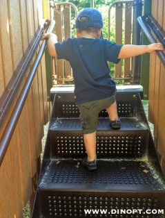 toddler stairs