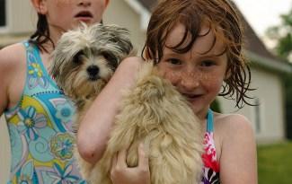 hond met kind