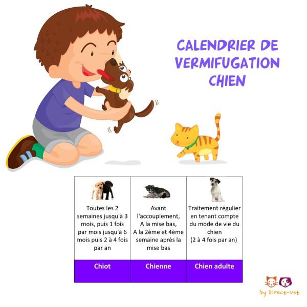 Calendrier vermifugation chien et chiot