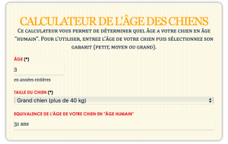 Comment Calculer Age Chien age dun chien - direct-vetdirect-vet