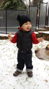 eli snow 2013