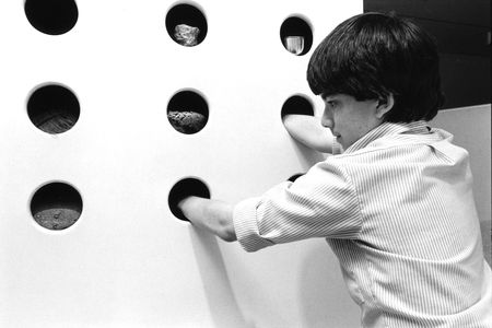 Child exploring texture through sample materials in the Gateway Gallery, 1984
