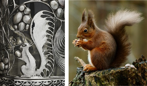 Detail of Wittgenstein Vitrine; Peter Trimming, Eurasian Red Squirrel, photograph. Wikipedia, web. November 24, 2014.