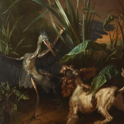 Jean-baptiste Oudry, Water Spaniel Confronting a Heron, 1722, Lent by the Michael L. Rosenberg Foundation.