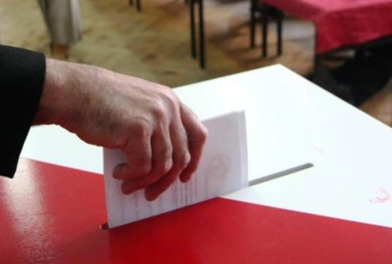 Jak odzyskać Polonię i czy Polonia powinna głosować?