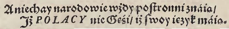Rey 1562