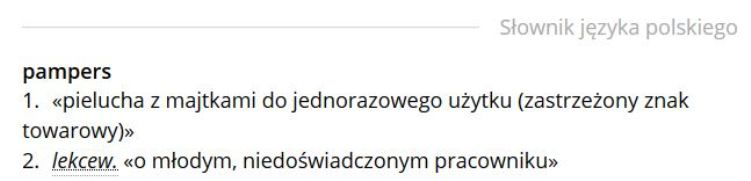 "hasło ""pampers"" na sjp.pwn.pl"
