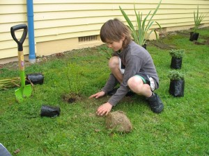 A young volunteer chips in with tree planting.
