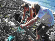 Beach clean up at Oneraki Beach.