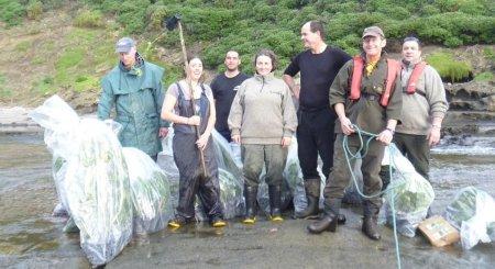 Mangere planting team