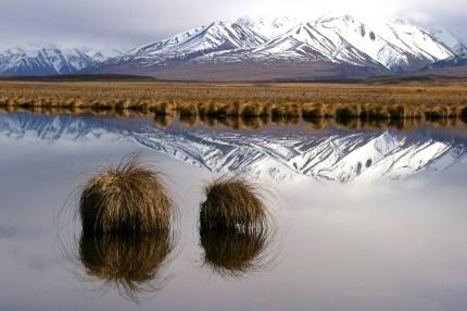 O Tu Wharekai Wetlands.