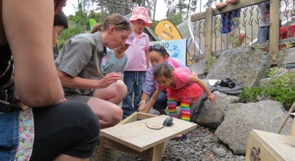 Emily shows children how traps help to protect whio.