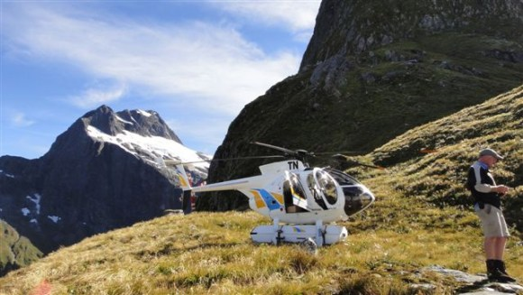 A helicopter used for whio transfers.