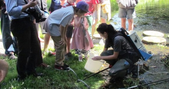 A DOC ranger shows attendees the creatures living in Oamaru Creek.