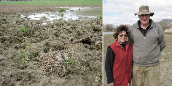 Left: Kakī eggs in a farmer's paddock. Right: Farmers Jim and Maryanne Morris