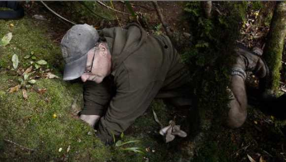 Fisherman Wayne Dreadon, burrowing for petrel.