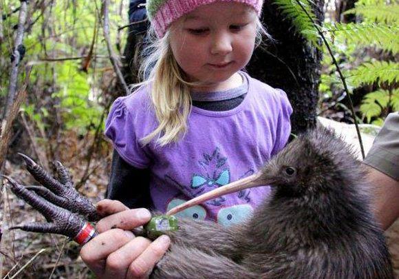 Ella Hood and kiwi at the Mataia release.