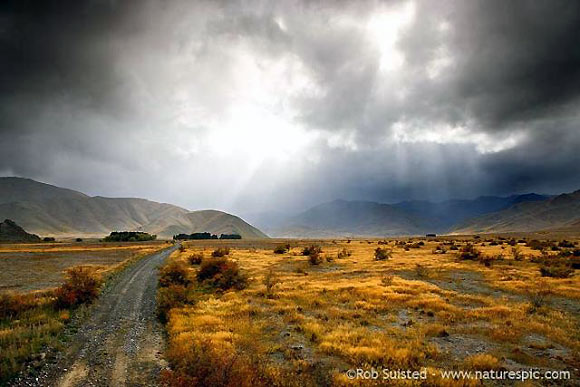 Molesworth: 'Like riding through a painting'. Photo copyright: Rob Suisted. www.naturespic.com.
