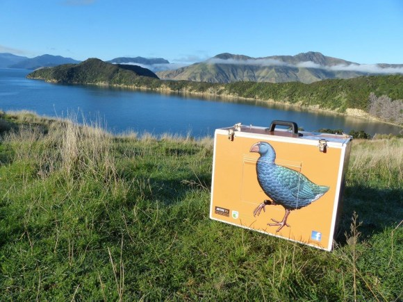 A Mitre 10 Takahē Rescue box on Maud Island.