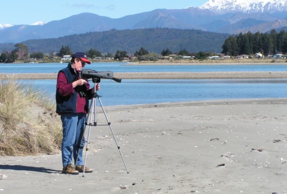 Pauline using her telescope to observe the godwits.
