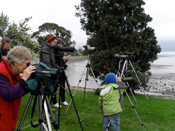 People viewing the godwits using telescopes.