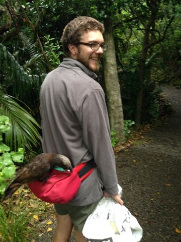 Nick with a cheeky kākā on Kapiti Island.